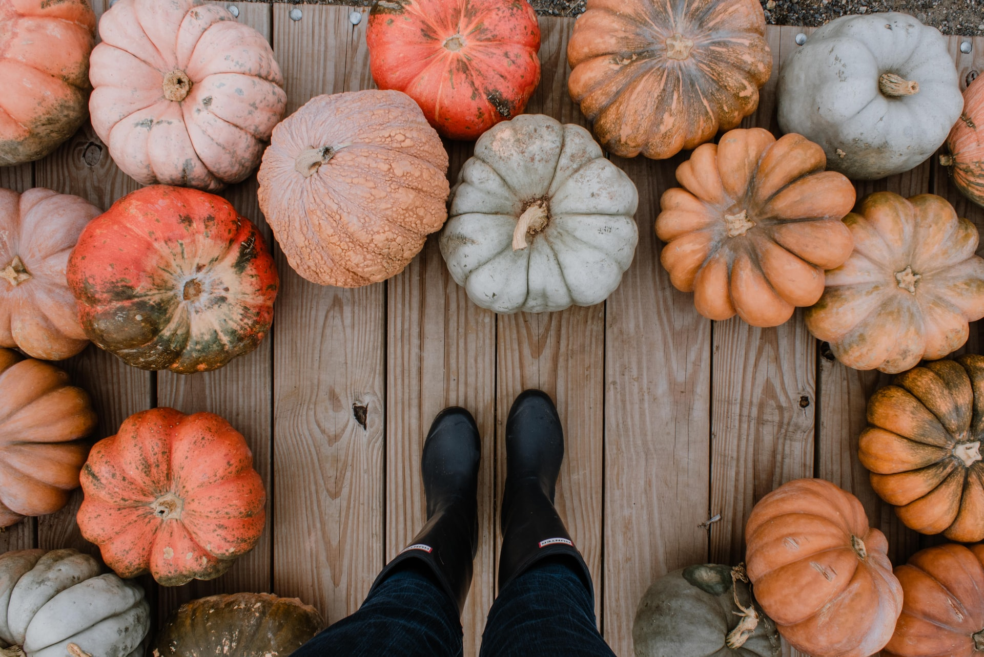 Create, No-Carve Ways to Decorate a Pumpkin in Your Washington DC Apartment